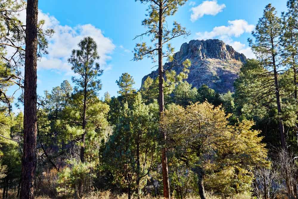 Best trails in Prescott Arizona to hike or walk